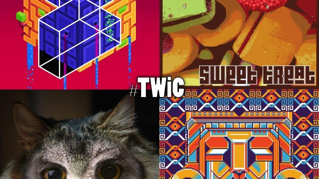 TWiC 006